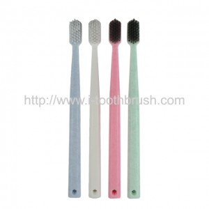 printed logo PP handle toothbrush for home use